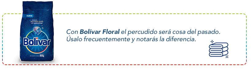 Detergente Bolivar