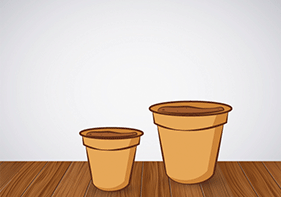 Cultivar hierbabuena