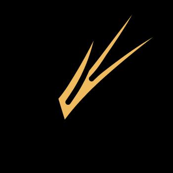 Icono de una cebolla china