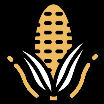 Agregar choclo